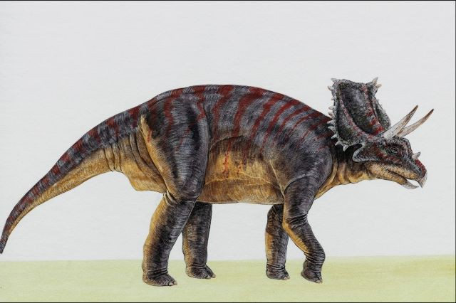 Dinosaures, une autre époque